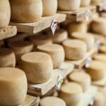 1351279301_cheese2a