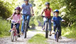 Bikes rent